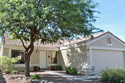 Oro Valley Single Family Home For Sale: 1333 W Desert Cloud Place