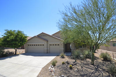 Marana Single Family Home For Sale: 5063 W New Shadow Way