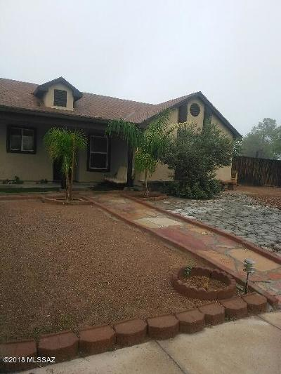 Tucson Single Family Home For Sale: 7102 S Dooley Drive