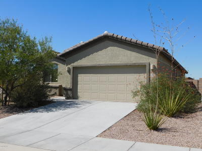 Marana Single Family Home For Sale: 11054 W Brown Ware Street