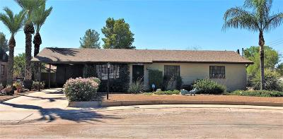 Tucson Single Family Home For Sale: 4652 E North Street