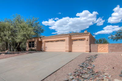 Tucson Single Family Home For Sale: 11365 N Via Rancho Naranjo