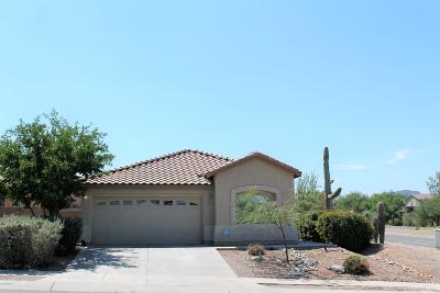 Tucson Single Family Home For Sale: 2477 W Golden Hills Road