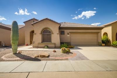 Green Valley  Single Family Home For Sale: 5800 S Painted Canyon Drive