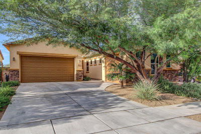 Sahuarita Single Family Home For Sale: 650 W Camino Curvitas