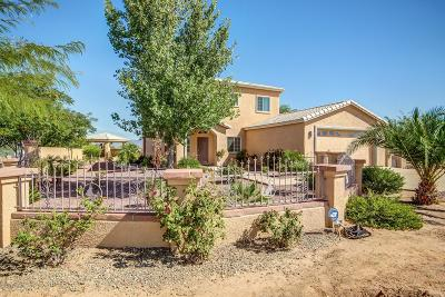 Pima County Single Family Home For Sale: 7552 W Velo Road