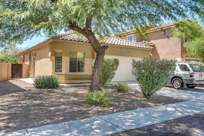 Sahuarita Single Family Home For Sale: 408 E Camino Limon Verde