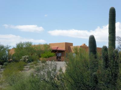 Tucson Single Family Home Active Contingent: 5313 S Saguaro Springs Place