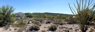 Vail Residential Lots & Land For Sale: 11061 S Lava Peak Avenue