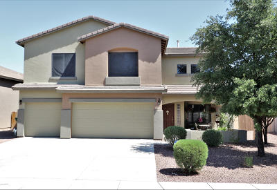 Sahuarita Single Family Home For Sale: 15349 S Via Rancho Grande