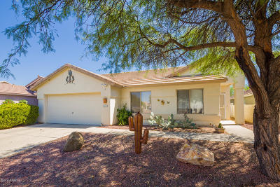 Single Family Home Active Contingent: 3065 S Austin Point Drive
