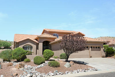 Tucson Single Family Home For Sale: 37762 S Skyline Drive