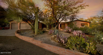 Tucson Single Family Home For Sale: 211 E Yvon Drive