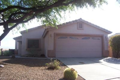 Tucson Single Family Home For Sale: 3840 N Nash Creek Court