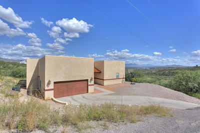 Rio Rico Single Family Home For Sale: 1241 Calle Reinaldo