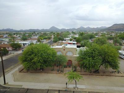 Tucson Single Family Home For Sale: 1726 S 8th Avenue