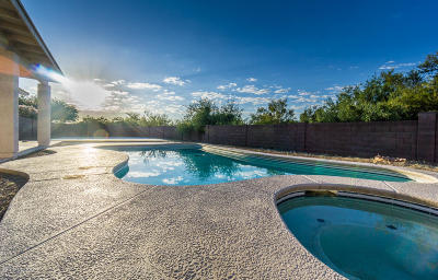 Sahuarita Single Family Home For Sale: 1653 W Calle Carinosa