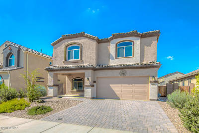 Marana Single Family Home For Sale: 9054 W Grayling Drive