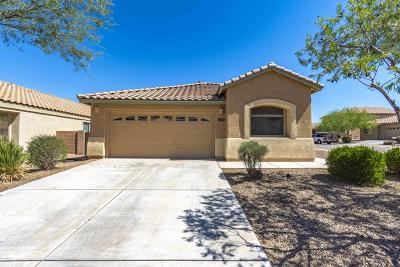 Marana Single Family Home For Sale: 11650 W Stone Hearth Street