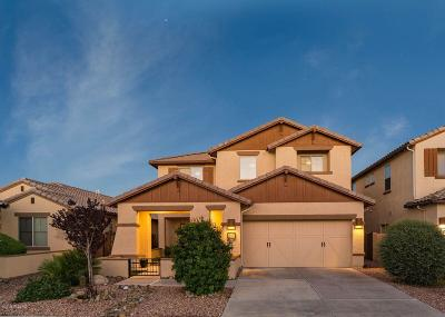 Oro Valley Single Family Home For Sale: 13510 N Piemonte Way