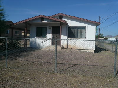 Tucson Single Family Home For Sale: 2120 S Park Avenue