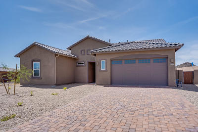 Tucson Single Family Home For Sale: 2663 W Starr Summit Court