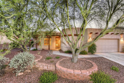 Oro Valley Single Family Home For Sale: 1822 E Terrestrail Place