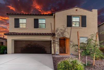 Tucson Single Family Home For Sale: 6619 E Via Boca Grande