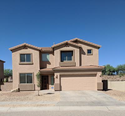 Tucson Single Family Home For Sale: 8184 S Placita Almeria