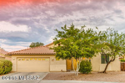 Tucson Single Family Home For Sale: 8040 N High Branch Drive