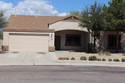 Tucson Single Family Home For Sale: 2850 S Beck Drive