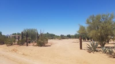 Residential Lots & Land Active Contingent: 12322 W Cameo Mary Lane