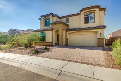 Marana Single Family Home For Sale: 9012 W Twin Springs Drive