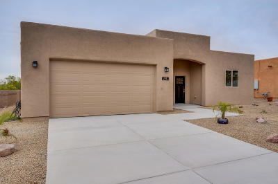 Pima County Single Family Home For Sale: 2220 Triangle X Lane