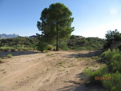 Tucson Residential Lots & Land For Sale: 15535 N Lago Del Oro Parkway