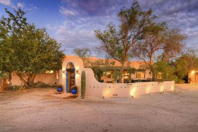 Tucson Single Family Home For Sale: 10818 N Camino De La Tierra