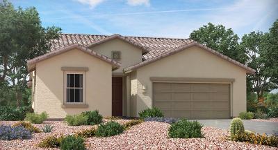 Single Family Home For Sale: 17314 S Nicholas Falls Drive S