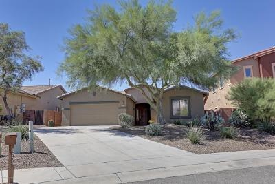 Tucson Single Family Home For Sale: 8209 N Amber Burst Drive