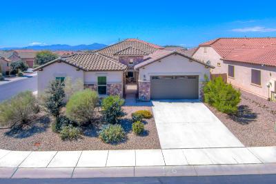 Marana Single Family Home For Sale: 3463 W Desert Peace Drive