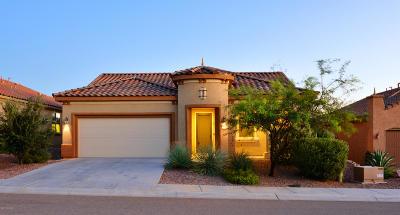 Marana Single Family Home For Sale: 6597 W Grandview Trail