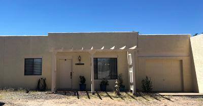 Tucson Single Family Home For Sale: 15901 W Killarney Avenue