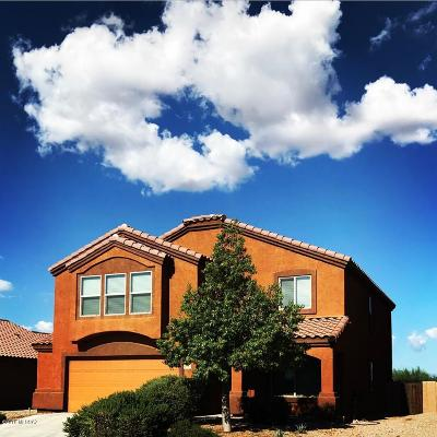 Tucson Single Family Home For Sale: 6943 S Valley Stream Drive