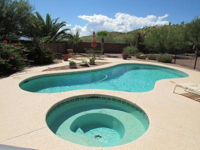 Sahuarita Single Family Home For Sale: 1669 W Camino Acierto