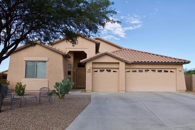Tucson Single Family Home For Sale: 7030 W Lone Flower Drive