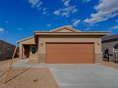 Sahuarita Single Family Home For Sale: 933 E Bottomlands Lane