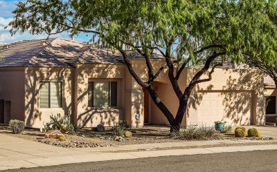 Marana Single Family Home For Sale: 4784 W Pier Mountain Place