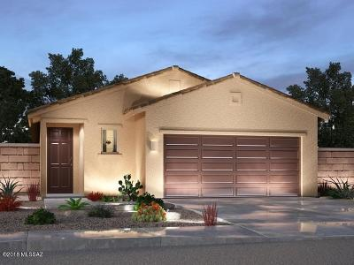 Sahuarita Single Family Home For Sale: 908 E Bottomlands Lane