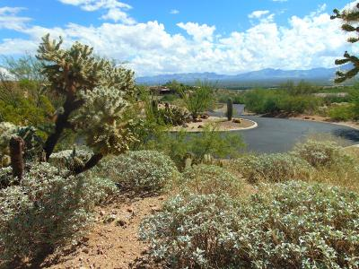 Green Valley Residential Lots & Land For Sale: 1045 W Corte Sombra De Terraza #26