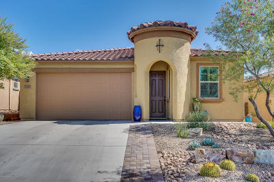 Marana Single Family Home For Sale: 12162 N Golden Mirror Drive