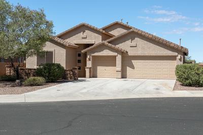 Marana Single Family Home For Sale: 4694 W Sunrise Shadow Court